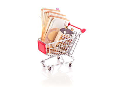 House and euro bank notes in a shopping cart to buy a home on a white background 免版税图像