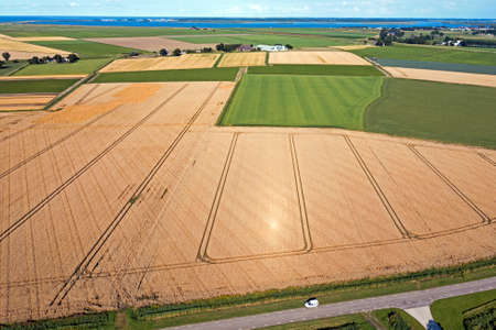 Aerial from wheat fields ready for harvest in the countryside from the Netherlands