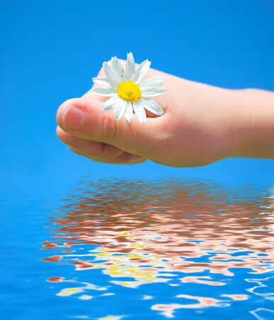 SPRING FEELINGS. Young hand with flower about clear water photo