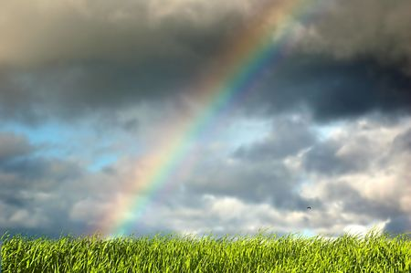 Fresh green grass on sky with beautiful rainbow Stock Photo - 1067835