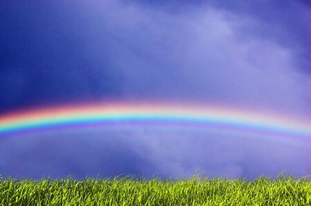 Fresh green grass on sky with beautiful rainbow. Version 2 Stock Photo - 1067844
