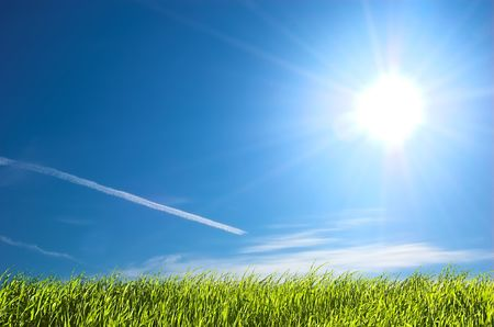 Fresh green grass on bright blue sunny sky background photo