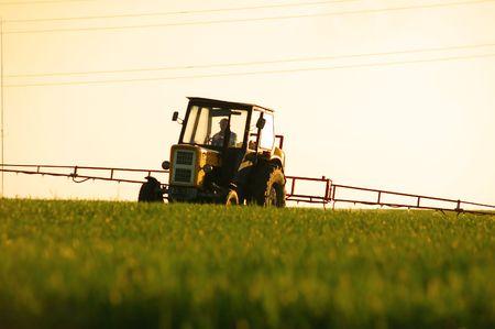crop sprayer: Spraying the Crop. Focus on tractor Stock Photo