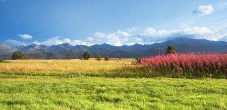 tatra: Tatra Mountains panorama Stock Photo