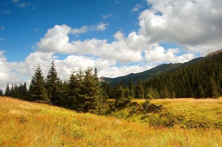 Tatra Mountains landscape, in the valley Stock Photo - 1134559