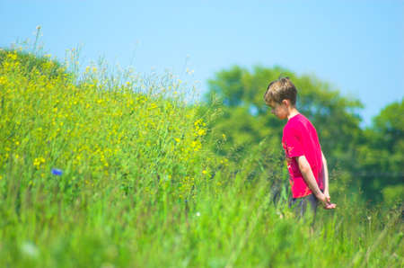 Boy on the meadow photo