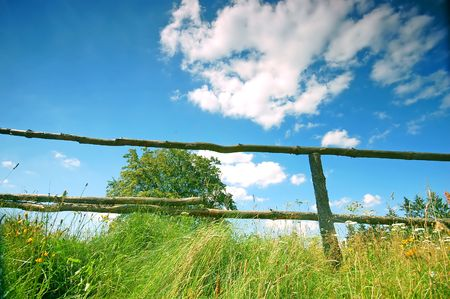 Rural scene with tree and fence Stock Photo - 1895411