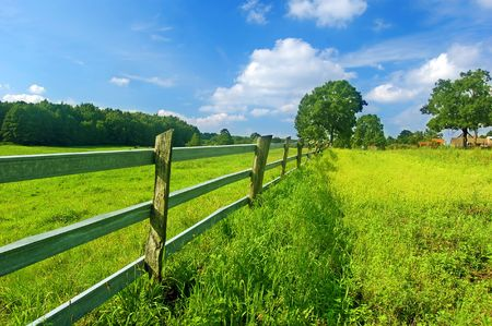 Summer bright landscape, blue sky and green fresh grass Stock Photo - 2014215