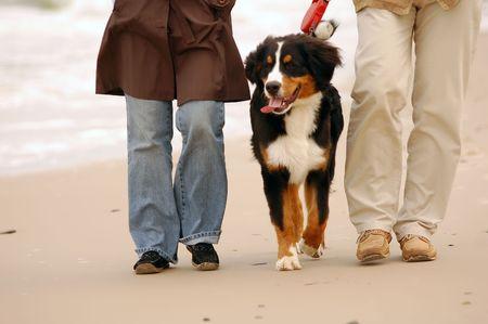 Walking together... Delicate seaside scenery photo