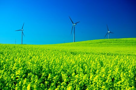 Wind turbines. Energy. Beautiful meadow Stock Photo - 3100380