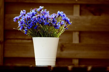 Outdoor design composed with natural wooden fence and flowers photo