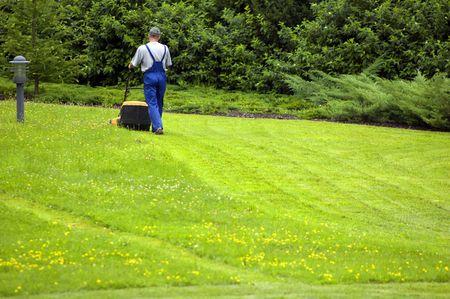gras maaien: Gardener maaien. Veel van de copyspace aan de onderkant.  Stockfoto