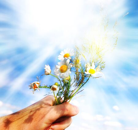 Giving spring flowers. Perfect background for Valentines day concept or others similar photo