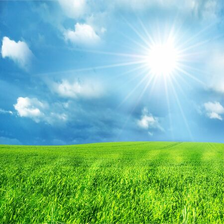 Green grass and blue sunny sky spring landscape. Perfect for backgrounds Stock Photo - 4415928