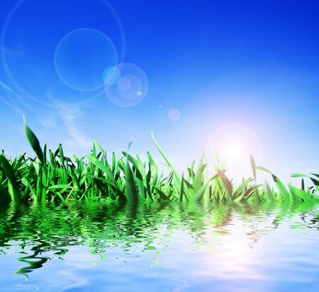 Green fresh grass, water and beautiful blue sky Stock Photo - 5358395