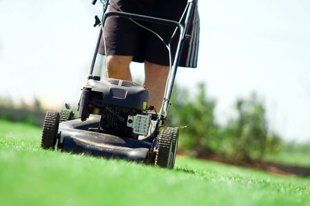 tondeuse: Homme de tondre la pelouse. Jardinage  Banque d'images