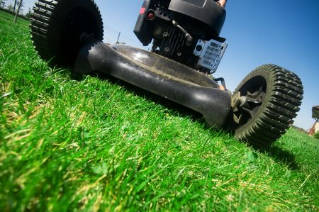 lawn mowing: The lawn mower. Gardening series