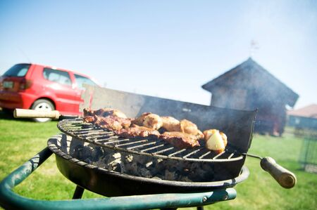 Cooking on the barbecue grill Stock Photo - 5358430
