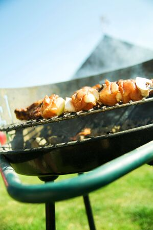 Cooking on the barbecue grill Stock Photo - 5358426