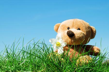 Un oso de peluche sentado en la hierba