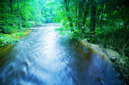 Fast stream running in the forest photo