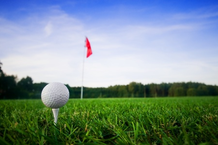 play golf: Golf field with green grass and red flag.