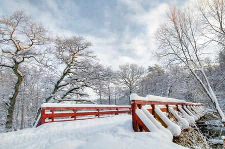 bridge in the forest: Winter forest sunset, lots of snow