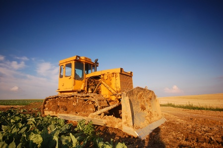 A big yellow digger on the field. Agriculture Stock Photo - 8579891