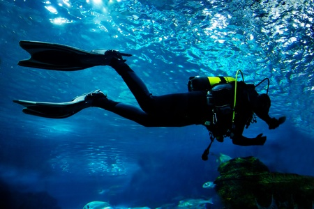 underwater diving: Diving in the ocean. Diver silhouette Stock Photo