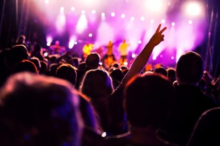 concierto de rock: Multitudes de personas que se divierten en un concierto de música