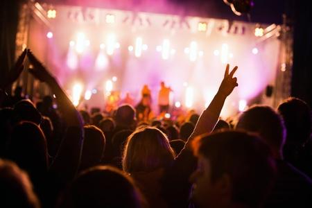 concierto rock: Una multitud de personas se divierten en un concierto de m�sica