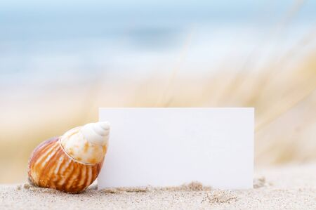 Blank white card for your message and a shell on summer beach photo