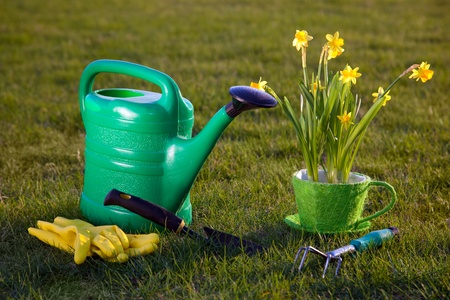 Gardening tools, watering can, flowers on grass in sunlight photo