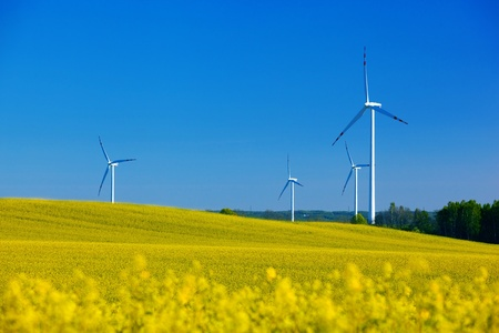 Wind Turbines on spring field. Alternative energy, environment concept photo