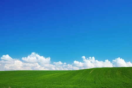 Green summer landscape with blue sky and puffy clouds photo