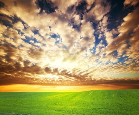 Colorful sunset over green grass field photo