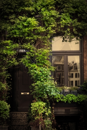 Retro vintage house entrance, door, window, ivy leaves photo