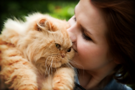 Young woman with Persian cat playing. Outdoors portrait photo