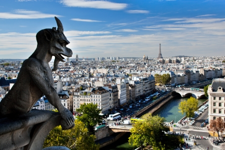 Paris panorama, France. View on Eiffel Tower and Seine river from Notre Dame Cathedral Stock Photo - 16417397