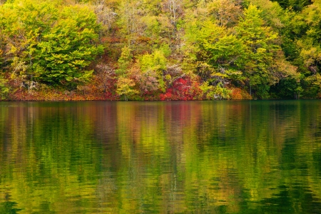 Lake in forest. Crystal clear water, colors of autumn. Plitvice lakes, Croatia Stock Photo - 16662217