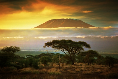 savanna: Mount Kilimanjaro and clouds line at sunset, view from savanna landscape in Amboseli, Kenya, Africa