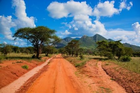 tsavo: Red ground road and bush with savanna landscape in Africa. Tsavo West, Kenya. Stock Photo