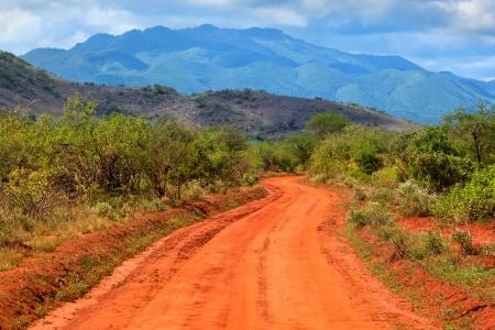 Red ground road and savanna landscape in Africa. Tsavo West, Kenya. photo