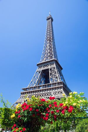 Eiffel Tower seen from Champ de Mars at a sunny summer day, Paris, France photo