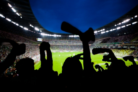 celebrate: Football, soccer fans support their team and celebrate goal, score, victory  Full stadium