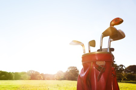 golf course: Golf equipment. Professional clubs in a leather baggage on golf course at sunny day.