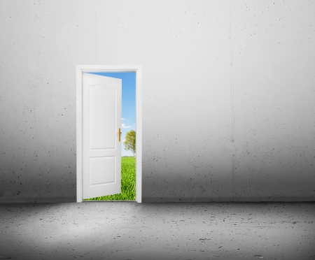 Open door to a new better world, the green summer landscape  Conceptual new way, entrance to new world, life, hope  photo