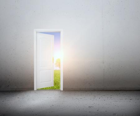 ドアが開いている新しいよりよい世界、緑の夏風景概念の新しい方法、新しい世界、人生、希望への入り口 写真素材