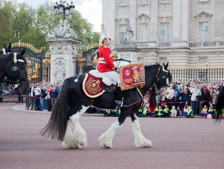 LONDON - MAY 17  British Royal guards riding on horse and perform the Changing of the Guard in Buckingham Palace on May 17, 2013 in London, UK