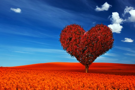 Heart shape tree with red leaves on red flower field. Love symbol, concept for Valentines Day, wedding etc.